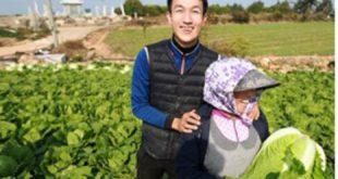 빚더미 연예기획사 대표 '땅끝'서 배추로 인생역전